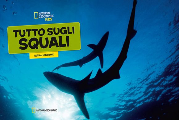 Everything Sharks. National Geographic