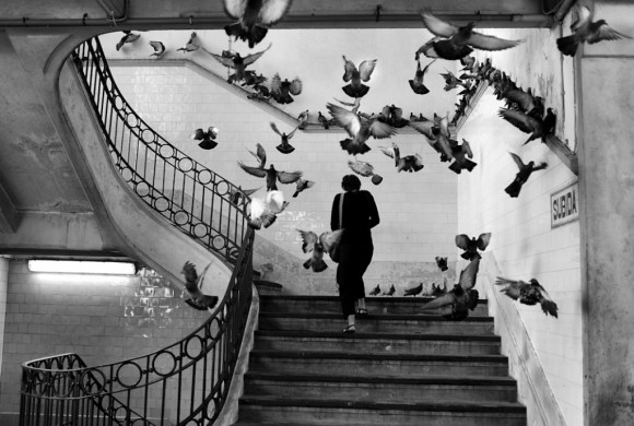 Henri Cartier-Bresson. Photographer